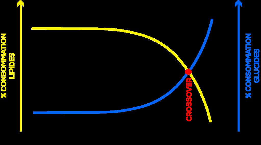 """Représentation graphique du """"Crossover""""© 2019 PASSION TRAIL"""